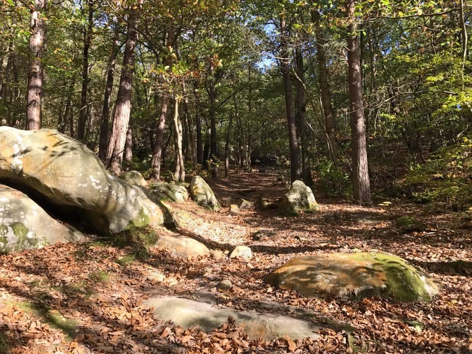 Randonnée GR1 – Etape 20 : Lardy à Saint-Chéron