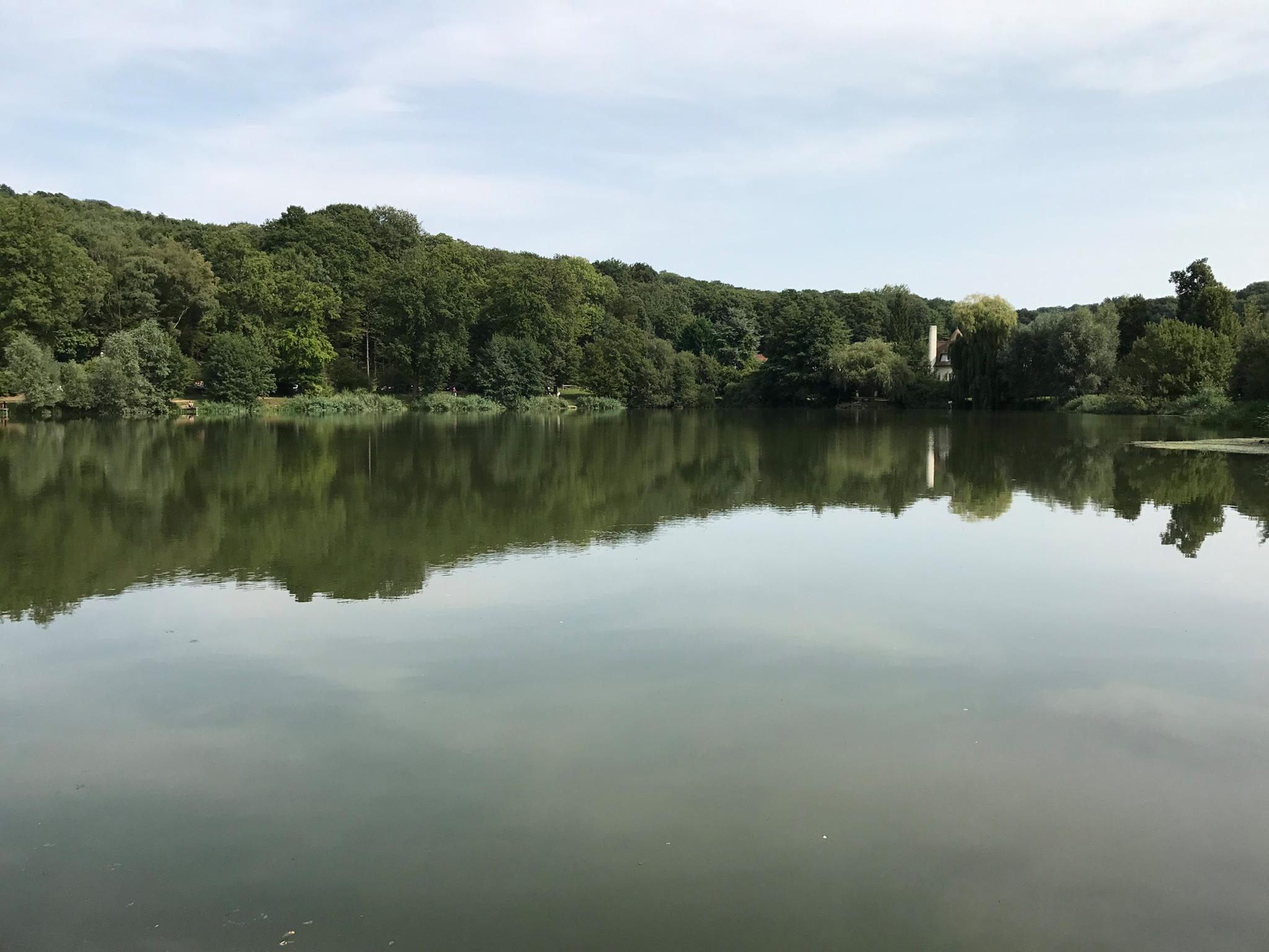Speed Hiking en Forêt de Meudon